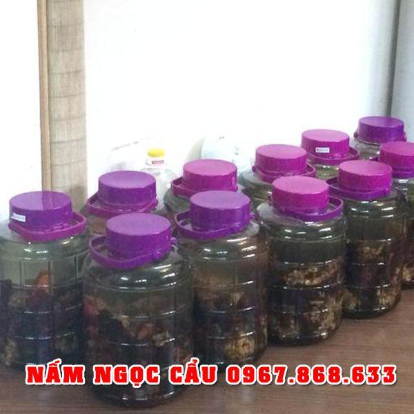 namngoccau5 - Nấm ngọc cẩu khô