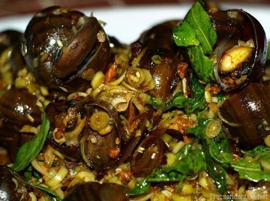 oc xao da nang - Top 10 món ăn nổi tiếng không nên bỏ qua khi du lịch Lạng Sơn