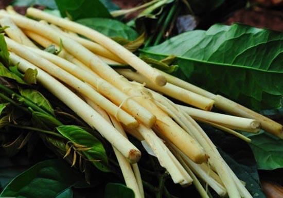 dac san dac nong 7 - Top 10 món ăn nổi tiếng không nên bỏ qua khi du lịch Đắk Nông