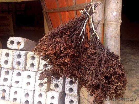 hat mac khen hoang lam 1 - 1kg hạt mắc khén