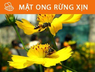 banner matongrung - Đặc sản dân tộc vùng cao Hoàng Lâm - Tinh hoa của núi rừng!