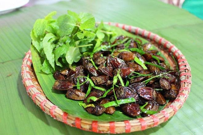luu ban nhap tu dong 4 - Những  món ăn độc đáo từ côn trùng của người Yên Bái