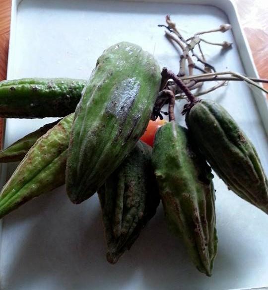 Những món ăn vặt độc đáo, ngon khó chối từ của người Thái Tây Bắc - Ảnh 4.