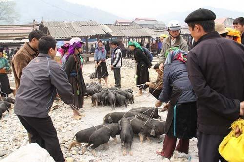mua thu len tay bac an dac san nui rung - Những món ăn ngon của người Tày