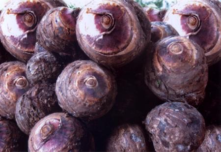nhung dac san noi tieng vung tay bac 18 - Những đặc sản nổi tiếng vùng Tây Bắc
