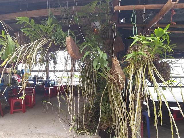thoa thich kham pha cac dac san vung cao doc quoc lo 6 3 - Thỏa thích khám phá các đặc sản vùng cao dọc quốc lộ 6
