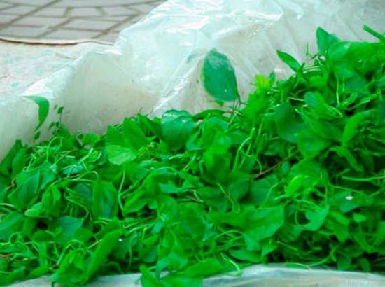 top 10 mon an noi tieng khong nen bo lo khi du lich dien bien 6 - Top 10 món ăn nổi tiếng không nên bỏ lỡ khi du lịch Điện Biên